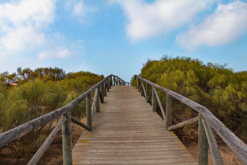 Ferias y rutas gastronómicas Cádiz 2018
