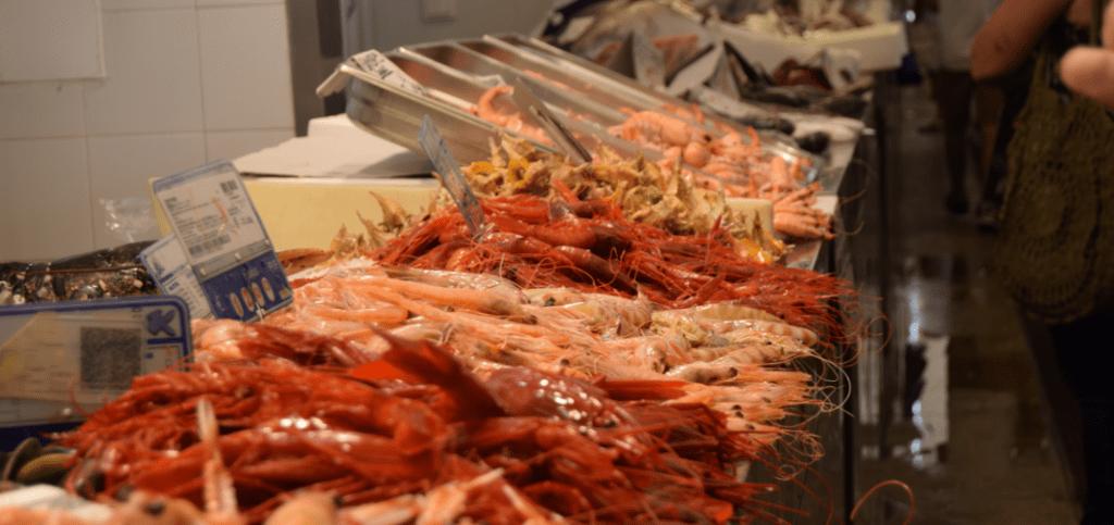 Ferias y rutas gastronómicas en Cádiz